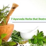7 Ayurvedic Herbs that Destroy Colon & Other Cancers Fast