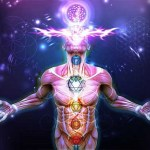 'Field of Elixir' Is More Important for Your Spiritual Growth Than the Pineal Gland