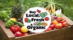 organic local fresh fruits