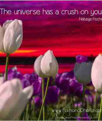 FD-Universe-Crush-blog