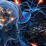 Your Brain IS The Universe: Physical Evidence Your Brain Is A Quantum Device Reflecting The Cosmos