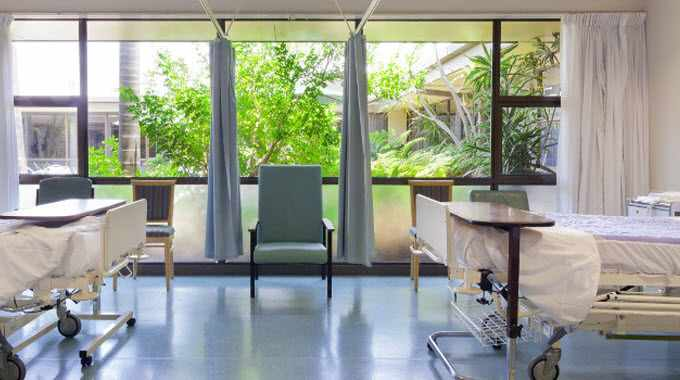 hospital_medical_room_plants-compressed