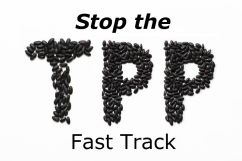 TPP-32924755_m-Edited-2
