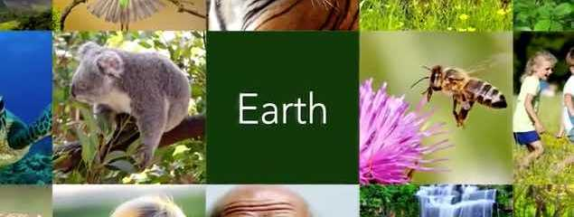 10 Simple Ways You Can Help Save Our Planet (1 Min. Video)
