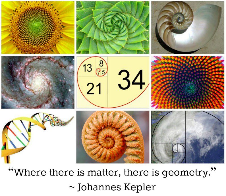 It's All 9: The Hidden Code of Our Divine Fractal Universe : Conscious Life News