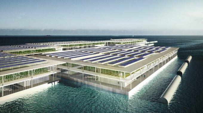 1_solar-floating-farm-750x400
