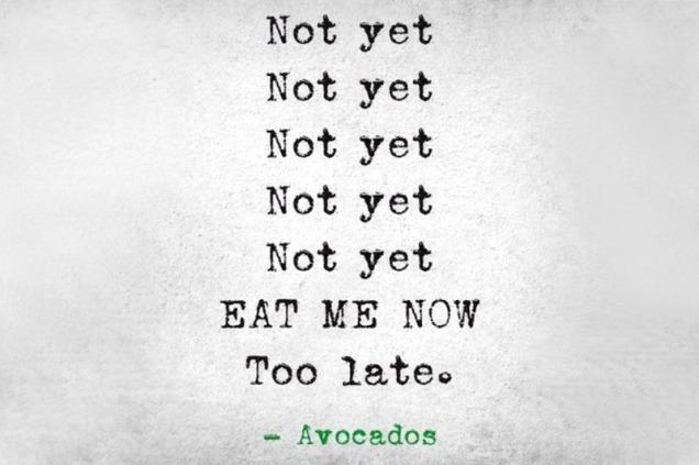 avocados not yet