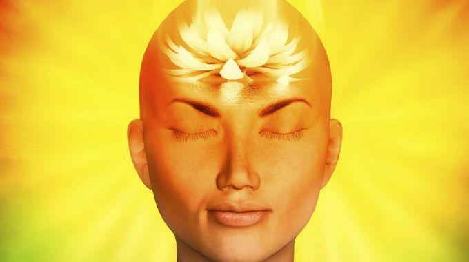 awaken-mind-compressed