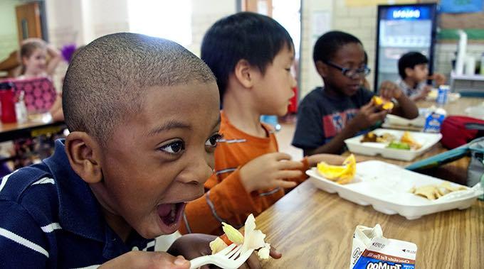 kids lunch school