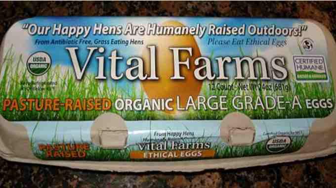 organic-eggs-compressed