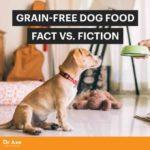 Paleo Dog: Does Grain-Free