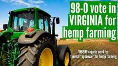 virginia passes hemp farming bill