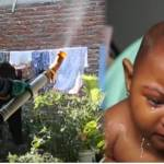 Argentine & Brazilian Doctors Say Larvicide  Probably Caused Microcephaly