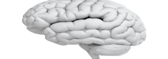 10 Brain Myths You've Been Believing That Are Flat Out Wrong