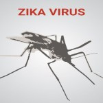 FDA Green-Lights Mutant Zika Killing Mosquito Release In Florida