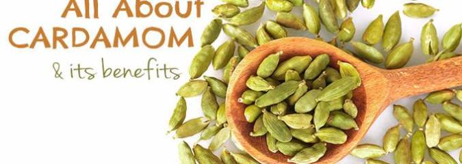 All About Cardamom and Its Amazing Health Benefits (With Recipes)