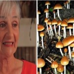 65 Year-Old Cancer Patient Takes Magic Mushrooms – It Changes Her Life Forever
