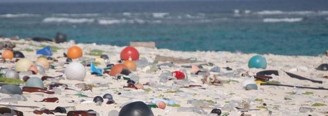 We've Thrown So Much Plastic Into the Ocean That Now We're Literally Eating It