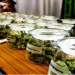 Prestigious Doctors Are Pushing to Legalize Recreational Cannabis