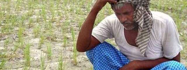 India Hit's Record High (Over 123 Degrees!): Many Farmers Commit Suicide Due to Draught