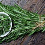 Study: Rosemary Oil Could Help Improve Your Memory