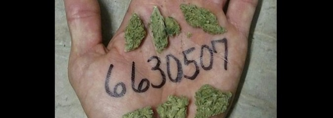 Why Cannabis Users Are Writing This Number on Their Hands and Posting It Online