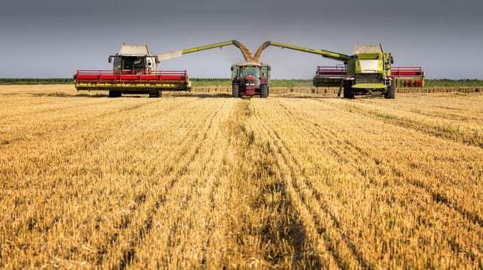 harvesters-loading-truck-compressed