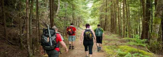 Scientific Evidence: 5 Powerful Ways Hiking Alters Your Brain