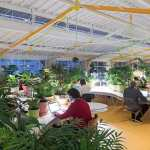Healthy Work-Life Balance: The Antidote to Toxic Office Space