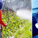 Pesticides Known to Kill Bees Found in U.S. Drinking Water