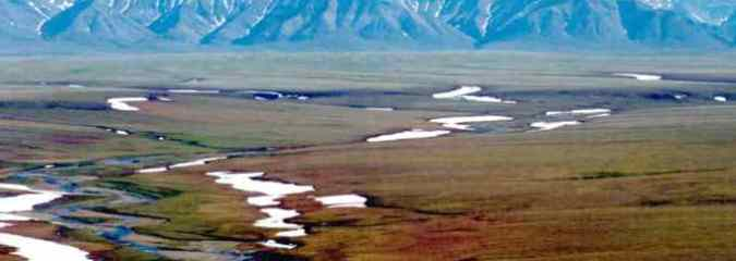 GOP-Controlled Senate Paves Way for Oil Drilling in Alaska's Arctic National Wildlife Refuge