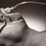 Study Reveals: Your Nose Offers Clues That Your Death Is Near