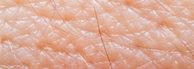 Miracle Of Biology: Ever Wondered Why Your Human Skin Doesn't Leak?