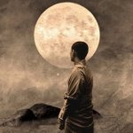 7 Ego-Dissolving Zen Stories that Will Make You View Things Differently