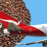 First-Ever Biofuel Flight From US To Australia Is Powered By Mustard Seeds