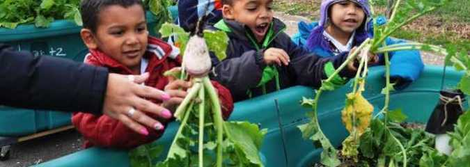 Study Shows School Gardens Help To Prevent Nutritional Deficiencies In Children