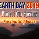 Earth Day 2019 Theme – Protect Our Species | Fascinating Facts