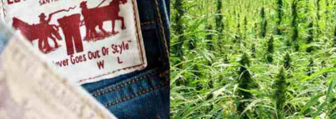 Levi's is Using Hemp in Their New Line of Sustainable Clothing