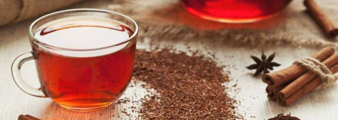 Top Benefits of Rooibos Tea