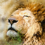Mercury Retrograde in Leo – July 2019