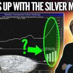 Mike Maloney: What is Up With the Silver Market? Who Is the Whale?