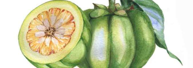 Garcinia Cambogia: Smart Solution for Weight Loss