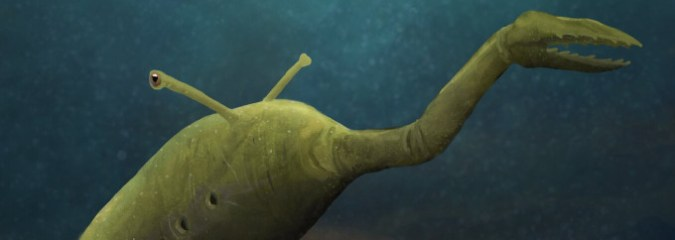 The Mysterious 'Tully Monster' Fossil Just Got More Mysterious