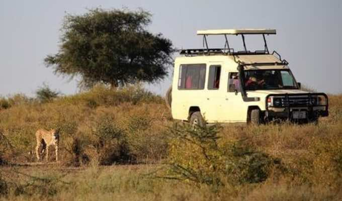 East Africa Travel Tips: 5 Things You Should Know Before Traveling to Kenya : Conscious Life News