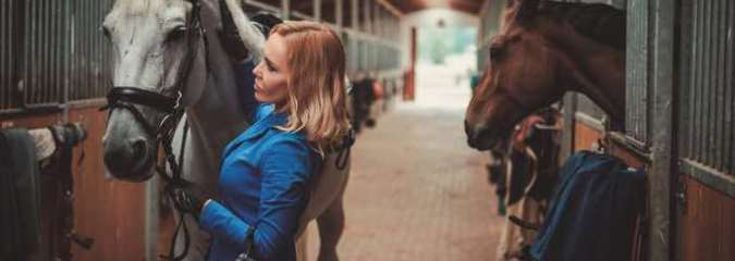 Can Horses Benefit From CBD?