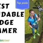 Do You Need To Invest in a Long-Reach Hedge Trimmer?
