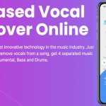 How Vocal Removal Software Can Help You