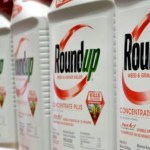 Bayer to Rethink Active Ingredient in Roundup Weedkiller After Judge Rejects $2 Billion Cancer Claims Deal