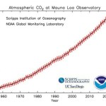 Earth's Atmospheric CO2 Soars to Highest Level in 4 Million Years