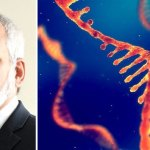 Fully Vaccinated Are COVID 'Super-Spreaders,' Says Inventor of mRNA Technology